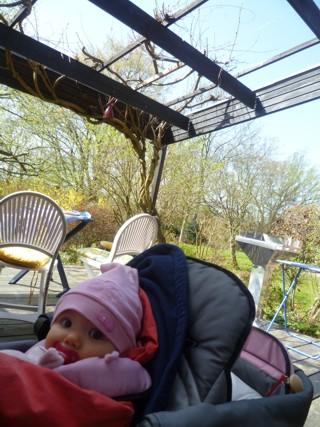 Mila im Garten auf der Terrasse.