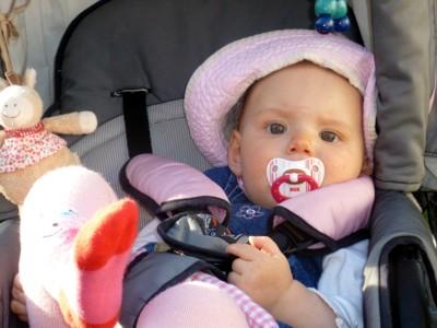 Mila chillt im Kinderwagen.