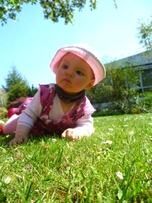 Mila auf der Wiese.