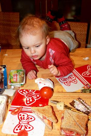 Mila klettert auf den Tisch.