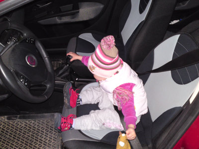 Mila auf dem Fahrersitz.