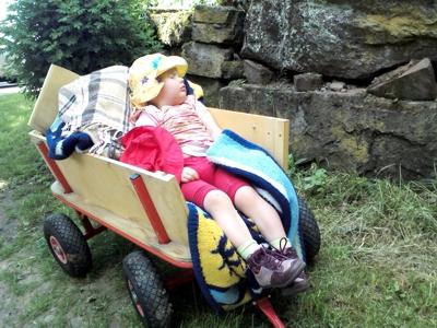 Mila schlummert beim Ausflug im Bollerwagen.