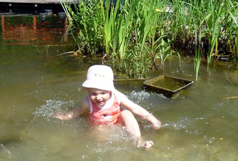 Mila planscht im Teich.