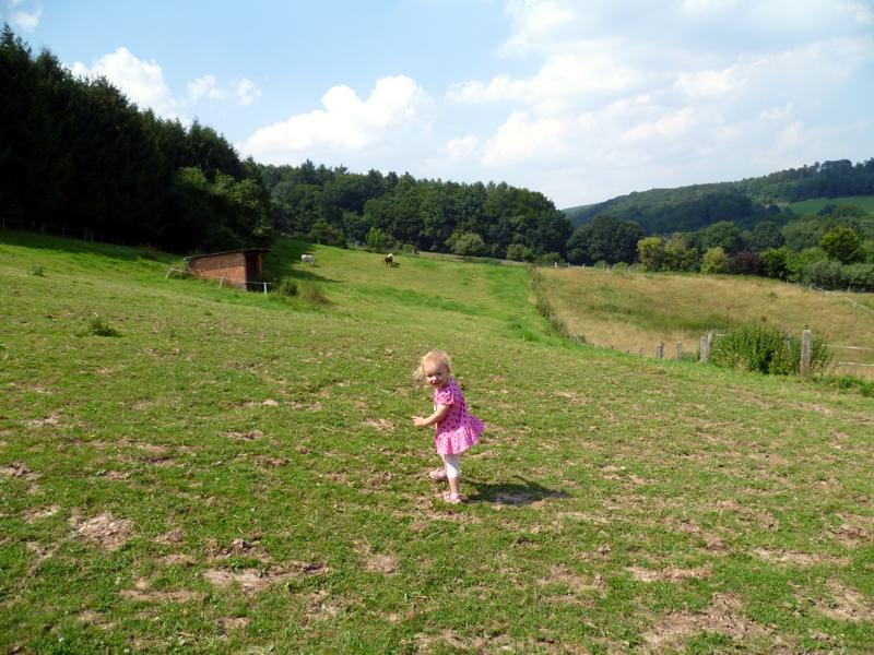 Mila auf der Weide.
