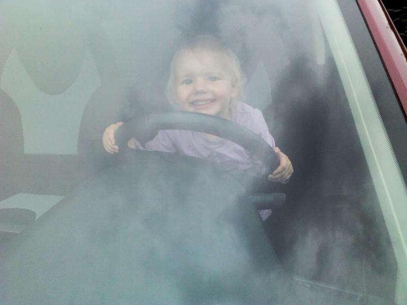 Mila fährt Auto