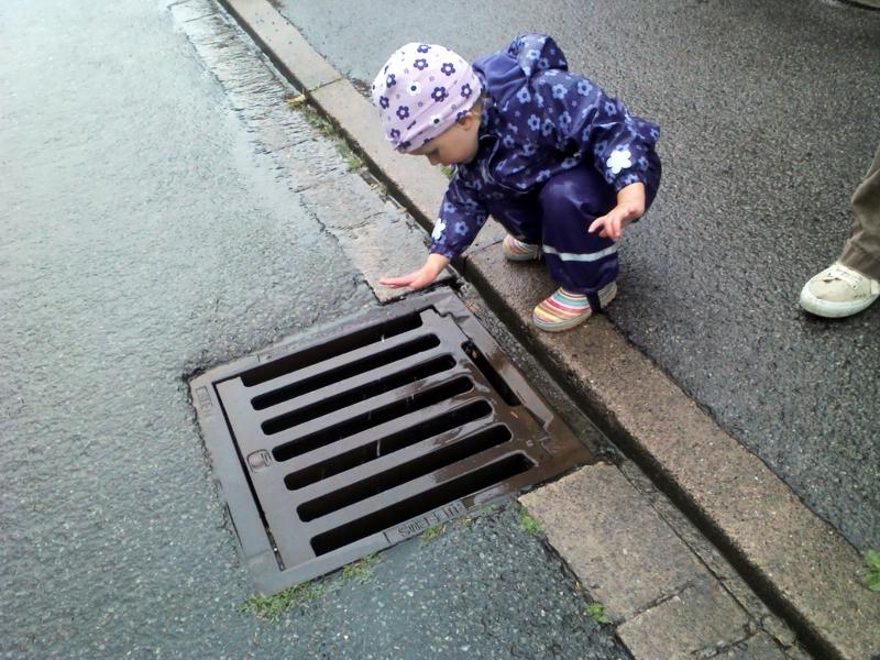 Mila beobachtet Regenwasser