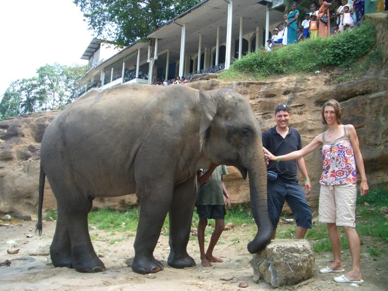 Ein Elefantenkind, aber immerhin.