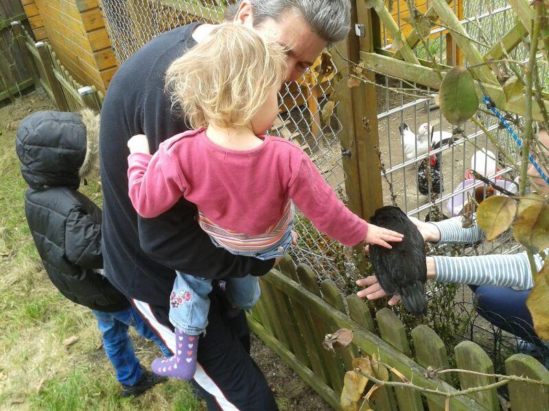 Mila streichelt einen Hahn.