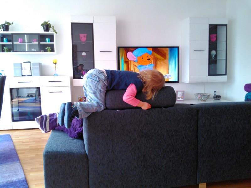 Mila liegt auf dem Sofa.