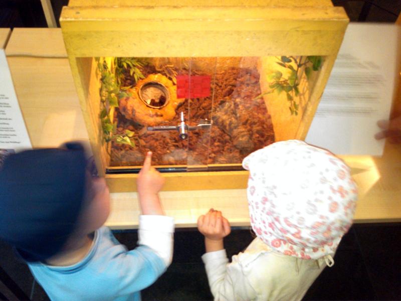 Mila und Eliah besuchen einen Skorpion
