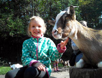 Mila im Tierpark